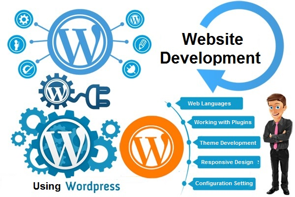 Learn website development by using WordPress and plugins
